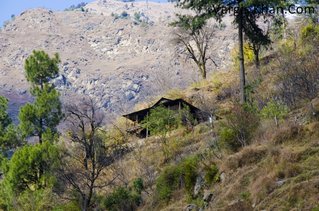 tirthan-valley-07.jpg