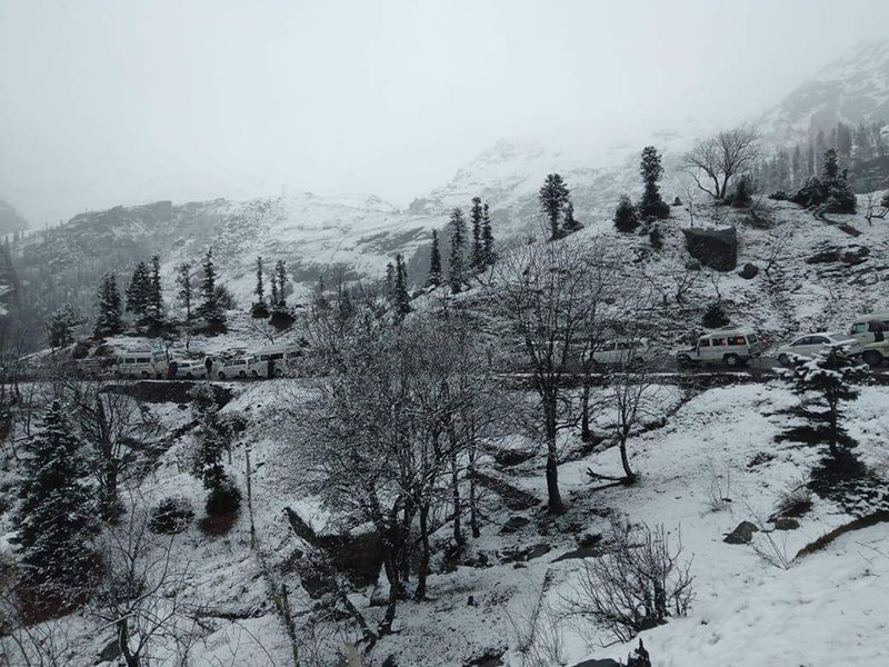 snowfall-in-manali-1.jpg