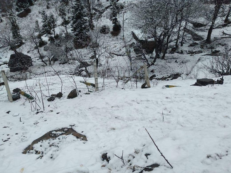 snowfall-in-manali-3.jpg