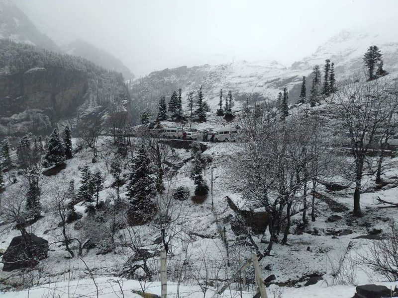 snowfall-in-manali-4.jpg