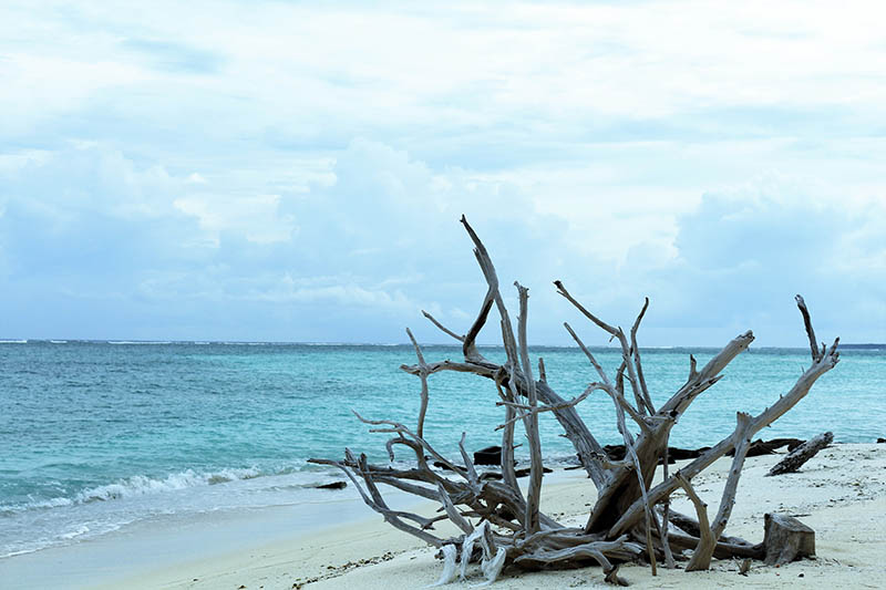 lakshadweep-diaries-6.JPG
