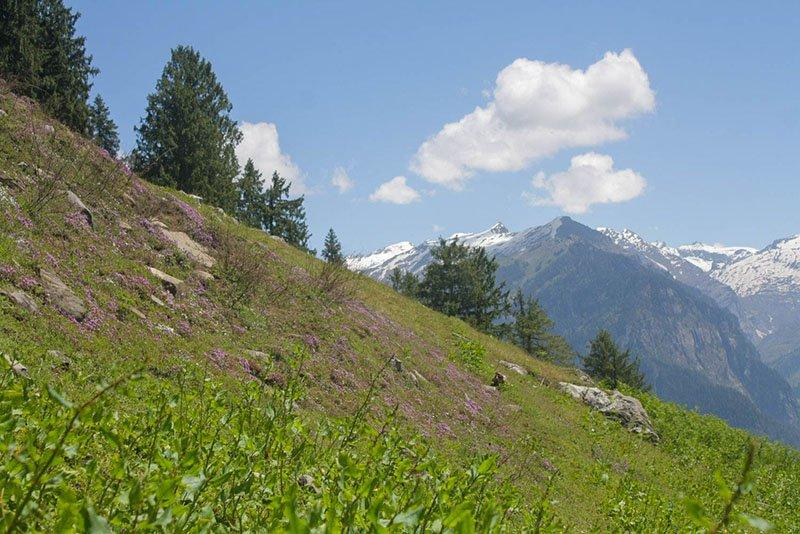 rani-sui-lake-trek-13.jpg