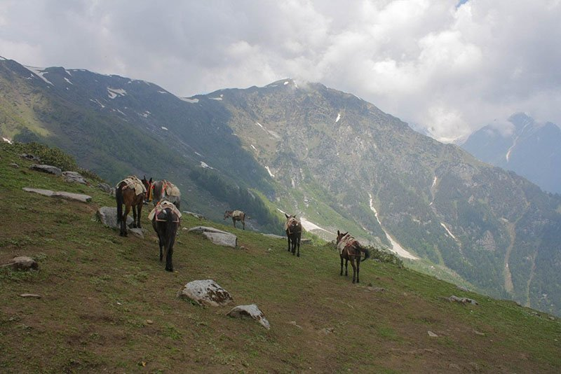 rani-sui-lake-trek-16.jpg