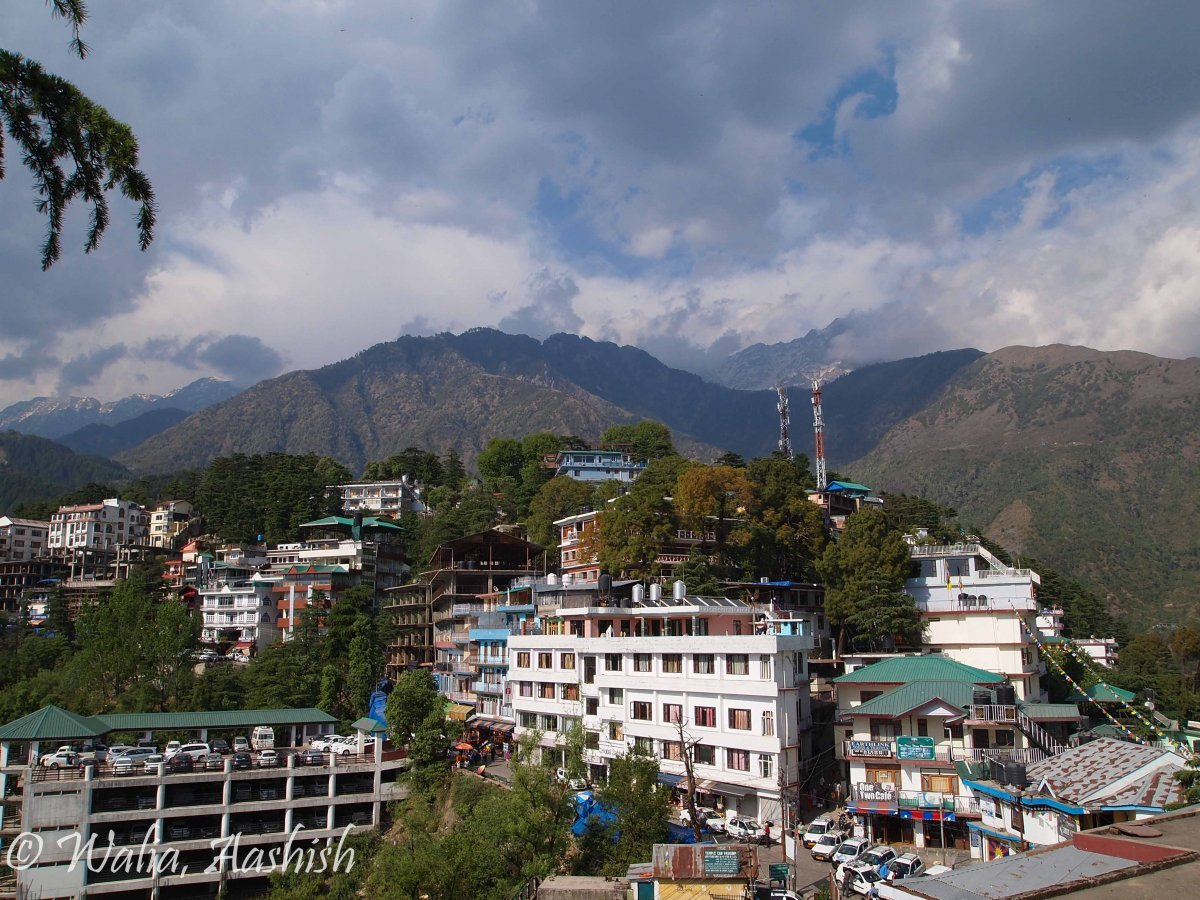 road-trip-to-mcleodganj-3.jpg