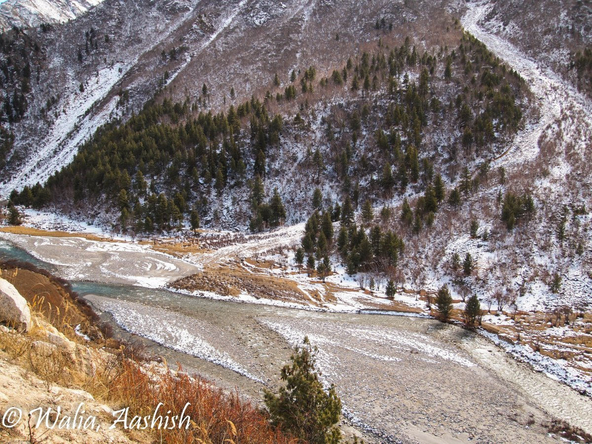 road-trip-to-kinnaur-valley-12.jpg