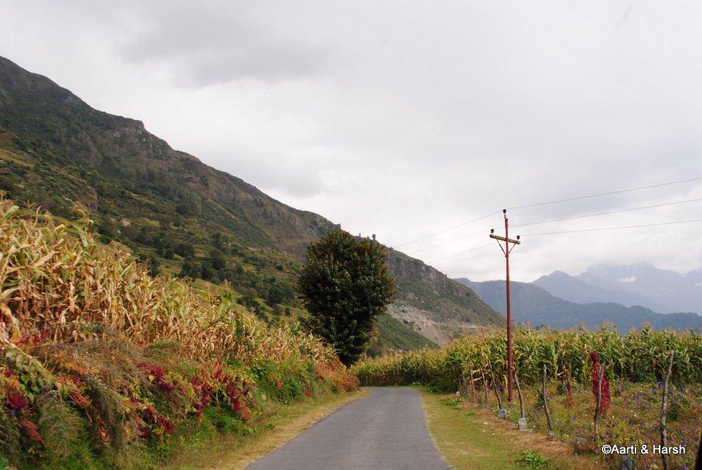 sach-pass-road-trip-6.JPG