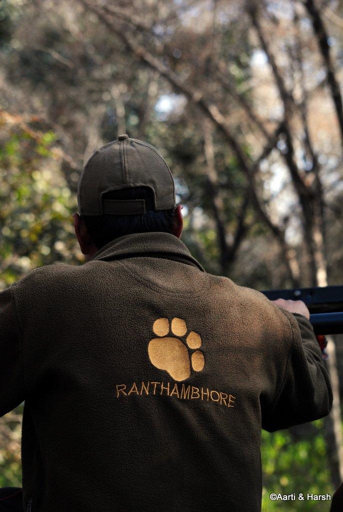 safari-in-ranthambore-national-park-8.JPG