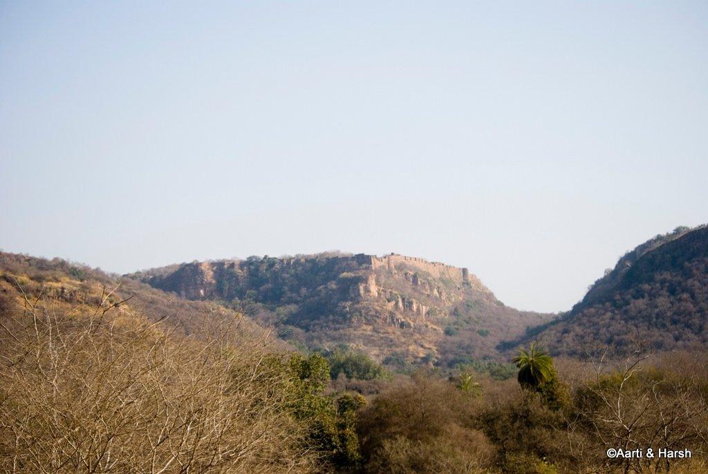 ranthambore-tiger-reserve-16.jpg