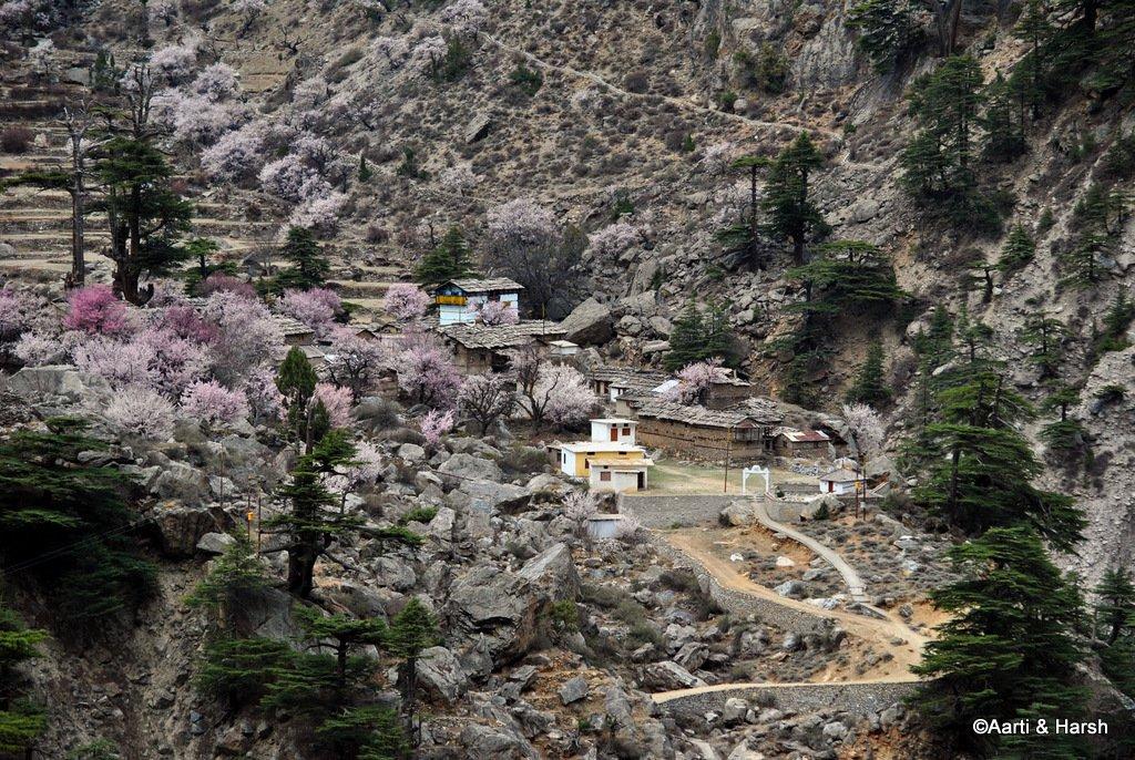 malari-village-and-niti-valley-7.JPG