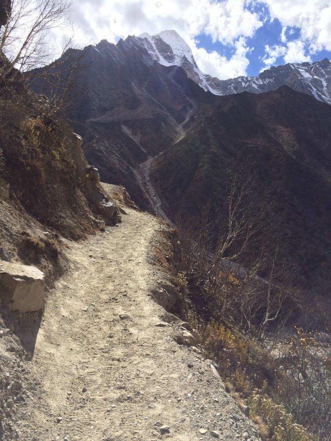 gangotri-to-gaumukh-trek-43.jpg
