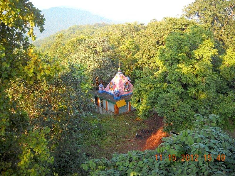 saranda-forest-reserve-21.jpg