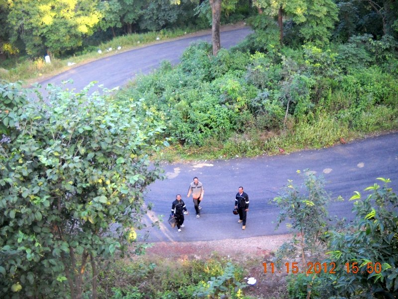 saranda-forest-reserve-35.jpg