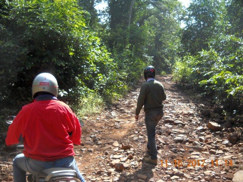 saranda-forest-reserve-41.jpg