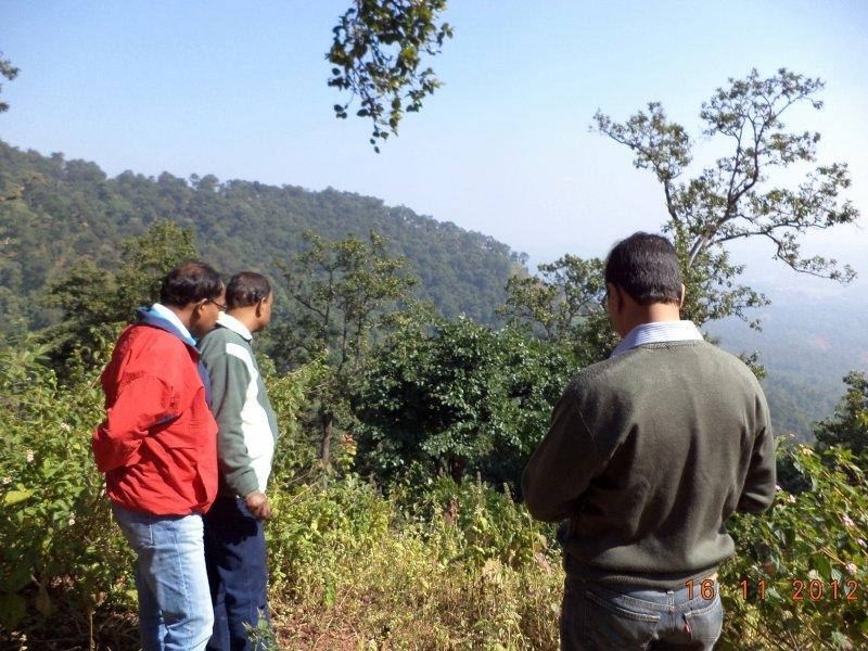 saranda-forest-reserve-48.jpg