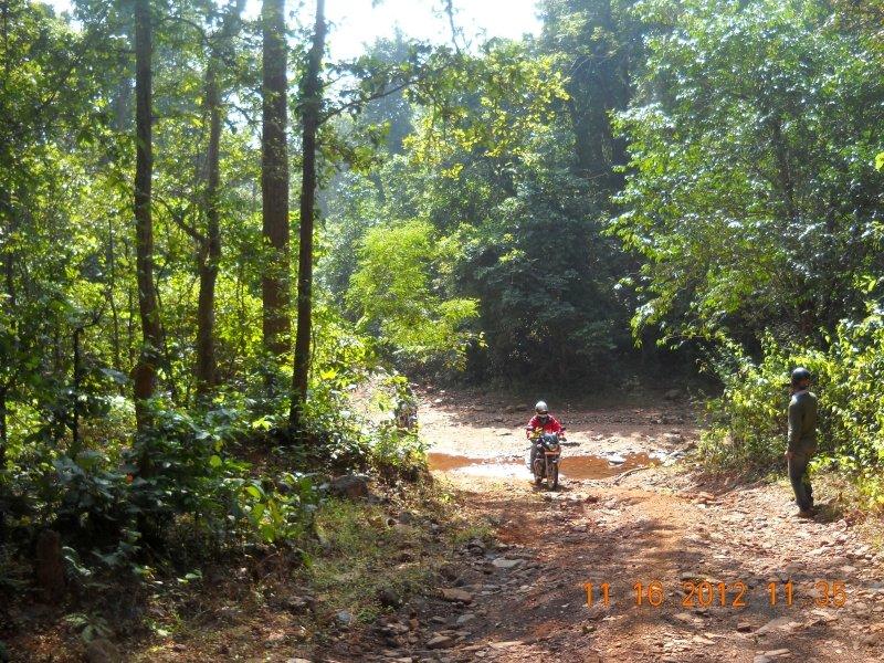 saranda-forest-reserve-51.jpg