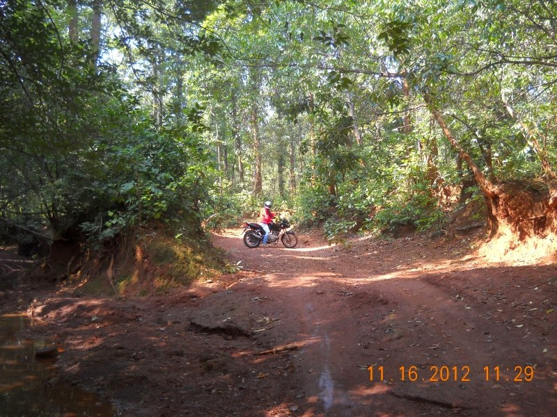 saranda-forest-reserve-54.jpg
