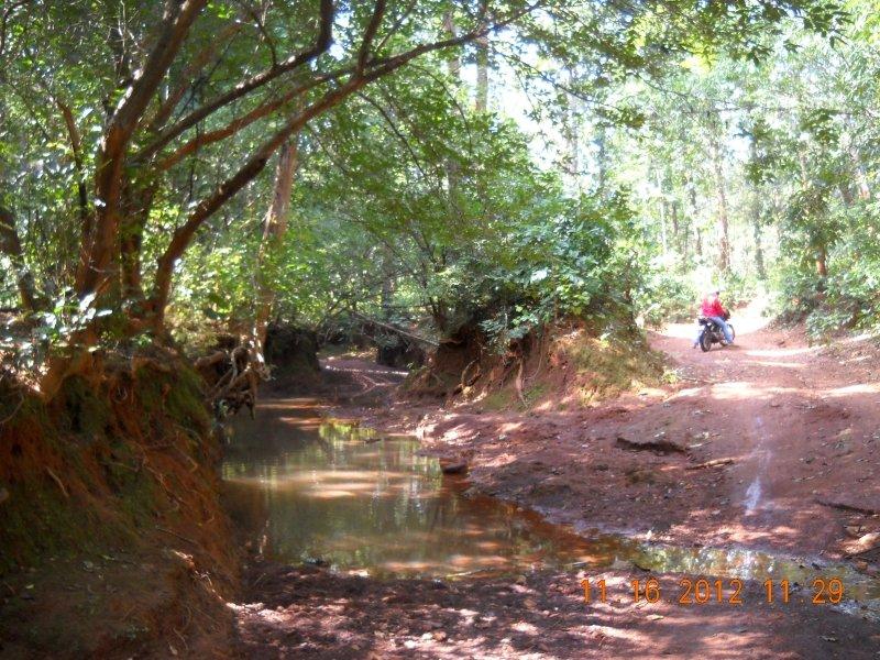 saranda-forest-reserve-55.jpg