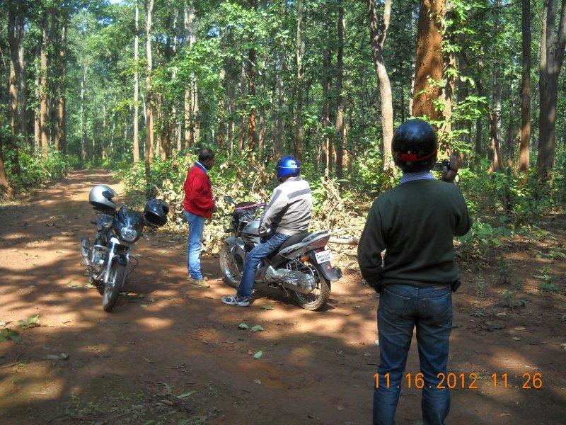 saranda-forest-reserve-56.jpg