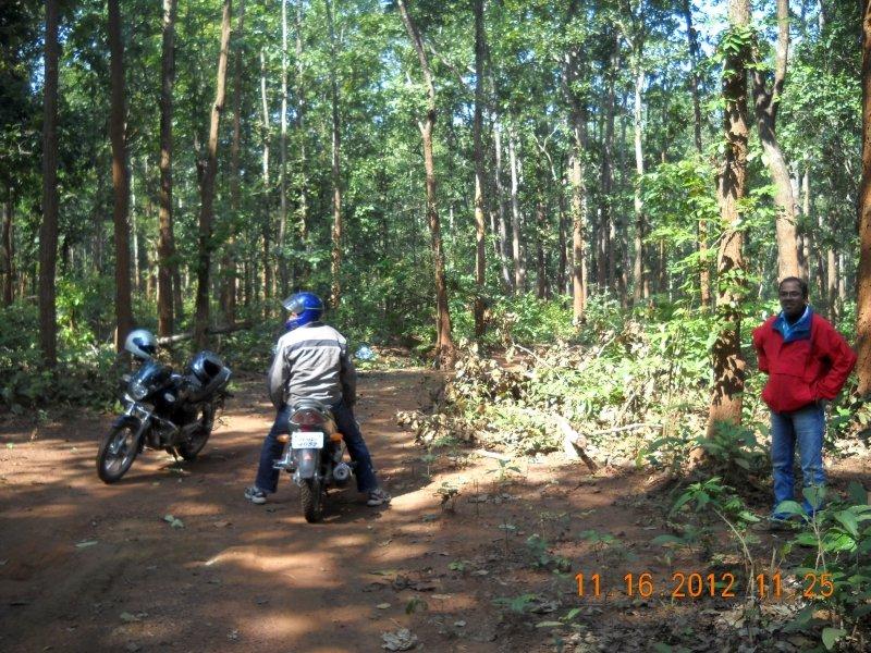 saranda-forest-reserve-57.jpg