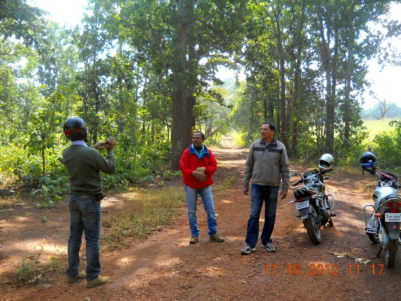saranda-forest-reserve-58.jpg