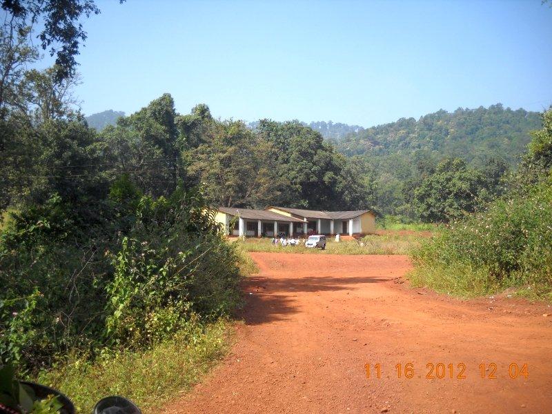 saranda-forest-reserve-62.jpg