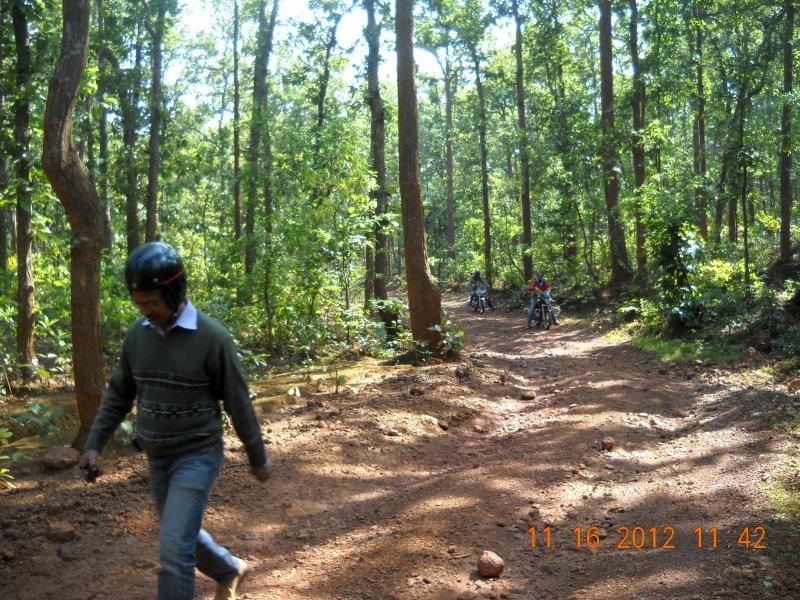 saranda-forest-reserve-65.jpg