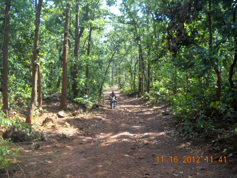 saranda-forest-reserve-66.jpg
