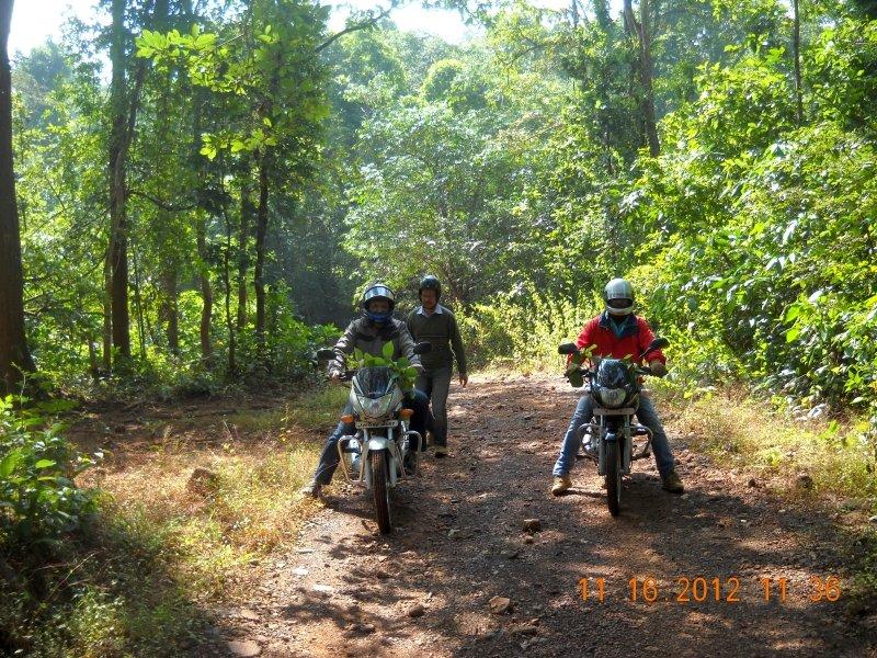 saranda-forest-reserve-67.jpg