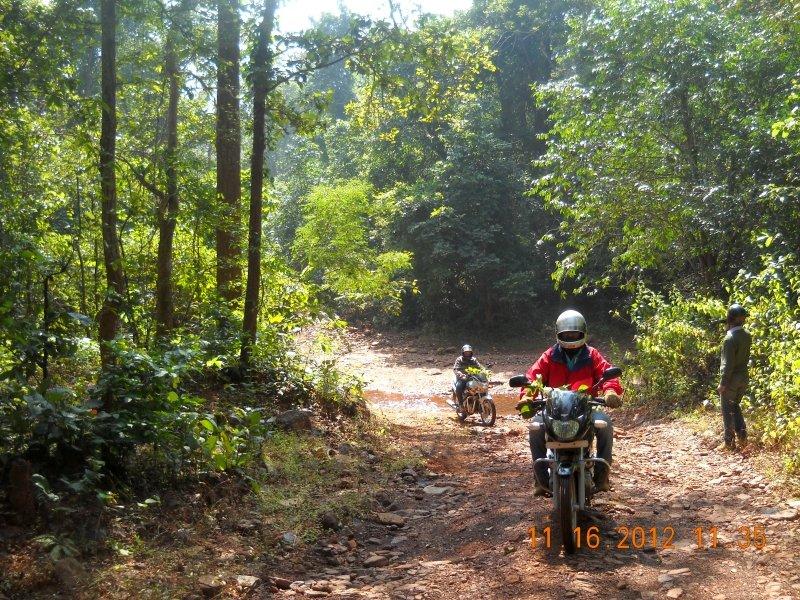 saranda-forest-reserve-68.jpg