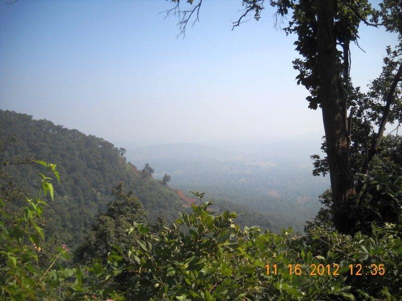 saranda-forest-reserve-73.jpg