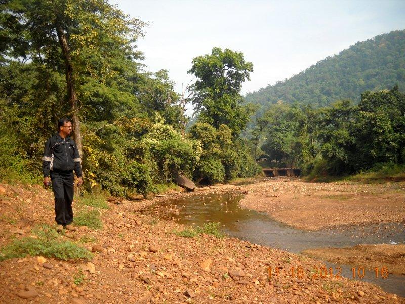 saranda-forest-reserve-103.jpg