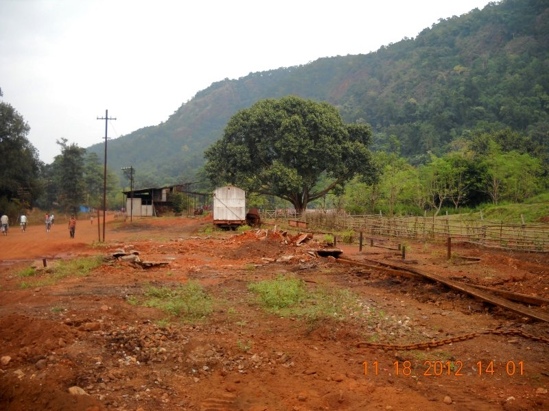 saranda-forest-reserve-115.jpg