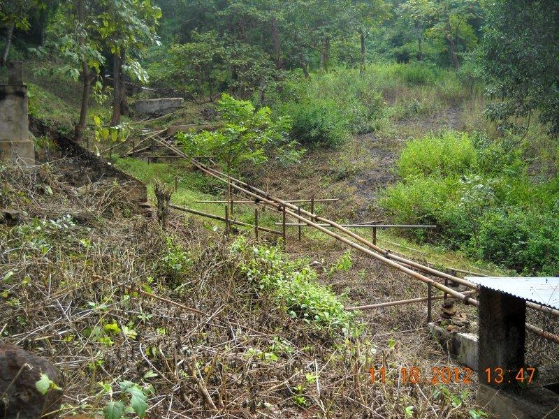 saranda-forest-reserve-118.jpg
